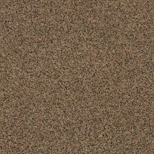 Anderson Tuftex Shimmy Tannin 00273_ZZ041