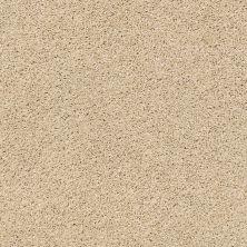 Anderson Tuftex Acadia Park Softer Tan 00123_ZZ044