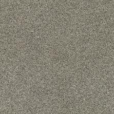 Anderson Tuftex Acadia Park City Gray 00558_ZZ044
