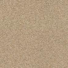 Anderson Tuftex Classics Acadia Park Serengeti 00733_ZZ044