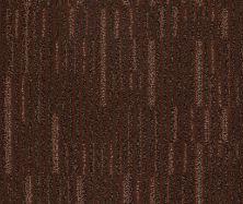 Anderson Tuftex Pounce Cinnabar 00867_ZZ047