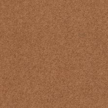 Anderson Tuftex Second Glance Pumpkin Spice 00668_ZZ058