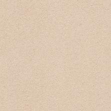 Anderson Tuftex Classic Beauty Delicate Tan 00163_ZZ059