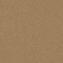 Anderson Tuftex Classic Beauty Barley 00227_ZZ059