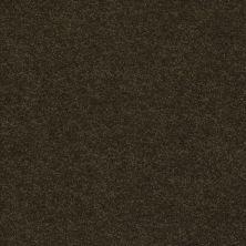 Anderson Tuftex Classic Beauty Fir 00339_ZZ059