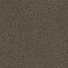 Anderson Tuftex Classic Beauty Aluminum 00578_ZZ059
