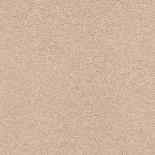 Anderson Tuftex Classic Beauty Cocoa Sand 00773_ZZ059