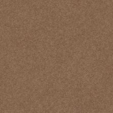 Anderson Tuftex Classic Beauty Mystic Brown 00775_ZZ059