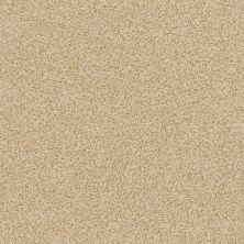 Anderson Tuftex Serenity Cove Golden 00224_ZZ060