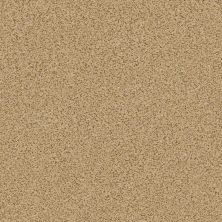 Anderson Tuftex Serenity Cove Tawny Bisque 00225_ZZ060