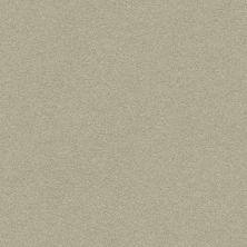 Anderson Tuftex Perfect Choice Glen 00352_ZZ064