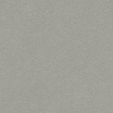 Anderson Tuftex Perfect Choice Chelsea Fog 00544_ZZ064