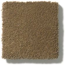Anderson Tuftex Perfect Choice Hearth 00738_ZZ064