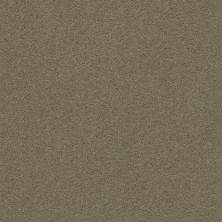 Anderson Tuftex Perfect Choice Sleek Suede 00757_ZZ064