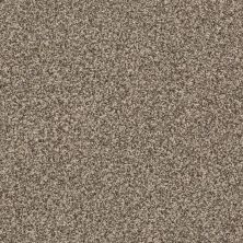 Anderson Tuftex Terra Linda Sleek Suede 00757_ZZ066