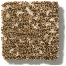 Anderson Tuftex Tanzania Barley 00227_ZZ067