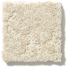 Anderson Tuftex Stargazer White Sand 00113_ZZ072