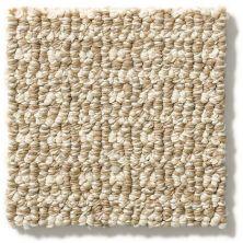 Anderson Tuftex Fetch Sesame 00213_ZZ074