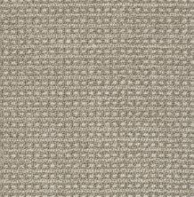 Anderson Tuftex Fetch Stampede 00753_ZZ074