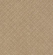 Anderson Tuftex Mosaic Coronado 00115_ZZ076