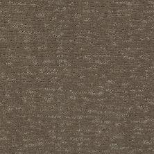 Anderson Tuftex Classics Sketch Dash 00556_ZZ077