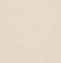 Anderson Tuftex Pawnache Barely Beige 00111_ZZ080