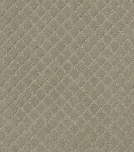 Anderson Tuftex Pawnache Gray Mirage 00533_ZZ080