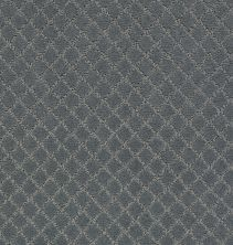 Anderson Tuftex Pawnache Steel Wool 00545_ZZ080