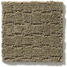 Anderson Tuftex Pawstruck Dry Sage 00536_ZZ081