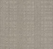 Anderson Tuftex Purrsuasion Backdrop 00572_ZZ082