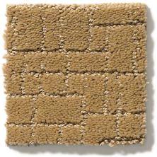 Anderson Tuftex Faux Paw Golden Straw 00224_ZZ084