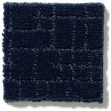 Anderson Tuftex Faux Paw Downpour 00445_ZZ084