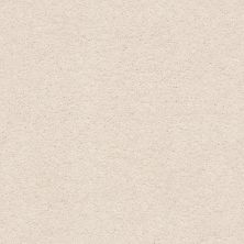 Anderson Tuftex Pawparazzi I Barely Beige 00111_ZZ092