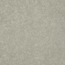 Anderson Tuftex Pawparazzi I Gray Mirage 00533_ZZ092
