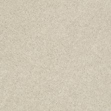 Anderson Tuftex Pawparazzi II Toffee Cream 00183_ZZ093