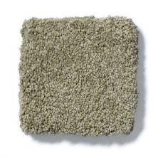 Anderson Tuftex Pawparazzi II Dry Sage 00536_ZZ093