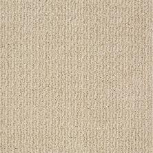 Anderson Tuftex Truly Delightful Fine Sand 00173_ZZ094