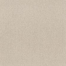 Anderson Tuftex Purrfection Mocha Cream 00151_ZZ097