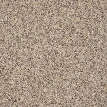 Anderson Tuftex Classics Explorer Sesame 0121B_ZZ099