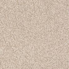 Anderson Tuftex Monarch Sesame Seed 0122B_ZZ219