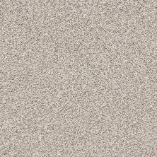 Anderson Tuftex Monarch Gentle Gray 0153B_ZZ219