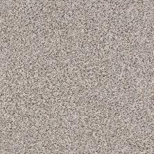 Anderson Tuftex Monarch Overcast 0553B_ZZ219