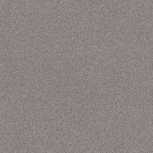 Anderson Tuftex Park Hill Silver Chain 0524B_ZZ240