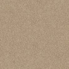 Anderson Tuftex Travertino Too Sesame Seed 00122_ZZ241
