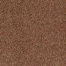 Anderson Tuftex American Home Fashions Marsala Ancient Spice 00628_ZZA02
