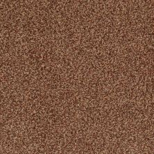Anderson Tuftex American Home Fashions Cannes Ancient Spice 00628_ZZA04