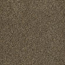 Anderson Tuftex American Home Fashions Cannes Taupe 00728_ZZA04