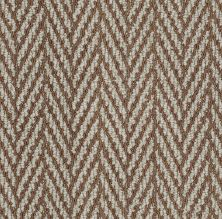 Anderson Tuftex American Home Fashions Echo Beach II Copper Dust 00677_ZZA10