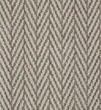 Anderson Tuftex American Home Fashions Echo Beach II Worn Bronze 00755_ZZA10