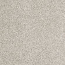 Anderson Tuftex American Home Fashions Belmont Oyster Shell 00152_ZZA14